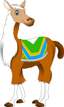 beautiful eyes: Beautiful llama with blue eyes and white mane