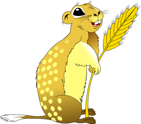 gopher: fun gopher with wheat germ, vetor and illustration