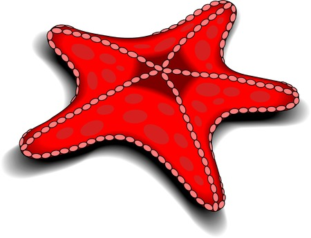 spanking: Beautiful red starfish swimming in the ocean, vector