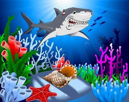 ocean floor: shark and starfish on the ocean floor, including coral