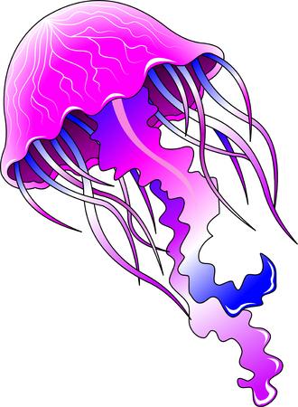 Hermosa medusas nadando en el océano púrpura Ilustración de vector