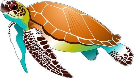 Grote mooie zeeschildpad zwemmen in de zee, vector