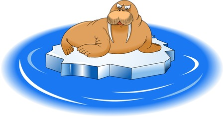 blubber: big walrus mustache is on the ice, vector and illustrator