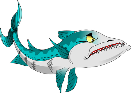 barracuda: high quality barracuda cartoon character include flat design Illustration