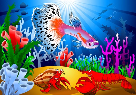 breeders: Aquarium fish. Beautiful guppy. Highly detailed vector and illustration