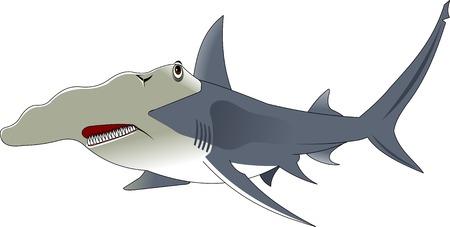 pez martillo: alta calidad de personaje de dibujos animados de tiburón martillo incluye diseño plano