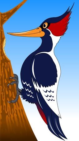 cute and hardworking cartoon forest bird woodpecker