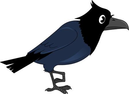 Vector image of the cartoon smiling crow, illustration Illustration