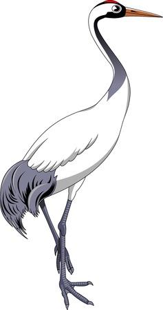 cranes: Cartoon crane bird. Vector illustration with simple gradients