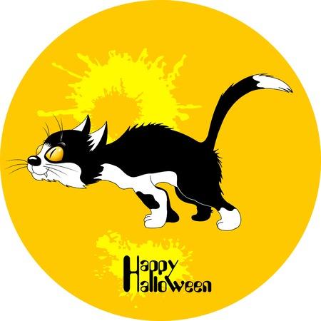 halloween black cat: Halloween black cat silhouette against a moon night sky