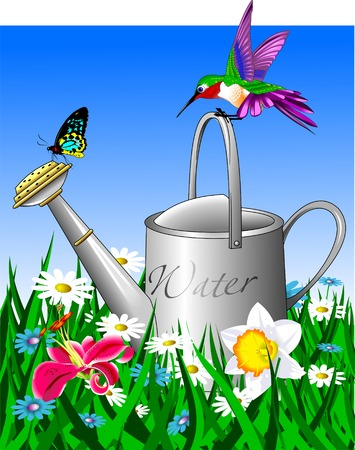 nurseryman: Old watering can in the garden field, vector and illustration Illustration
