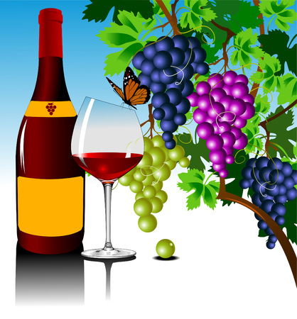 winemaking: Three grape bushes of different varieties of grapes, vector Illustration