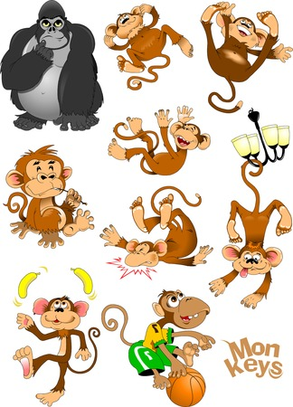 nine monkeys  laughing and jumping, vector and illustration
