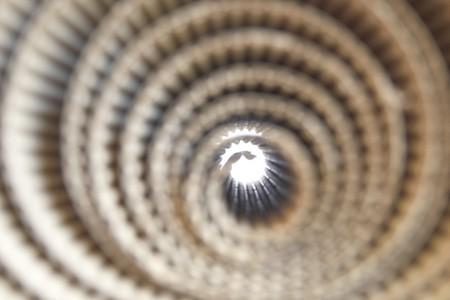 Corrugated paper rolls photo