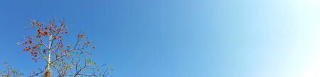 Panorama shot photo. Clear and deep color of blue sky on day time for background usage(horizontal). Royalty free stock picture.
