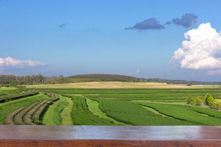 Empty wood table top on Landscape view of tea plantation with blue sky in afternoon, Nature background