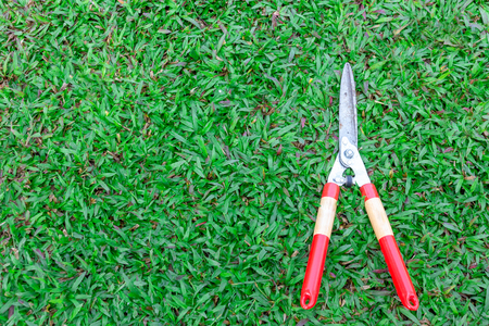 Grass scissors on green grass background