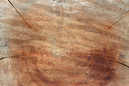 Old wood texture background surface natural pattern of cut tree 스톡 콘텐츠