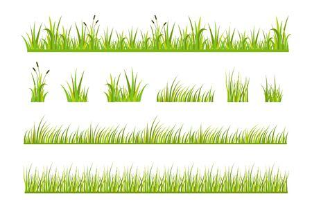 Ilustración de vector de hierba verde, elementos de césped natural aislado fondo blanco para plantillas Ilustración de vector