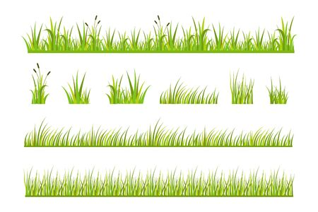 Vector illustration of green grass, natural grass elements isolated white background for templates Vettoriali