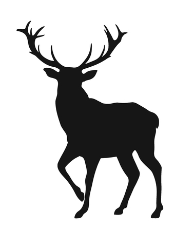 Simple black silhouette of the buck on the white background
