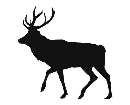 simple black silhouette of the stag on the white background.