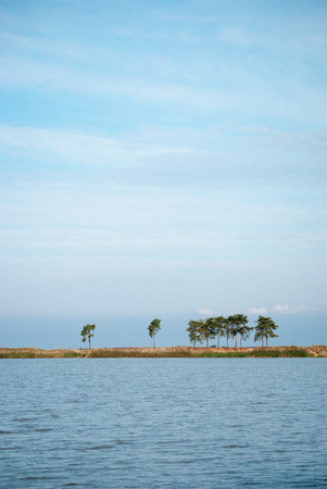 Blue sky and water of the lake and the sandy spit with the line of pines between them