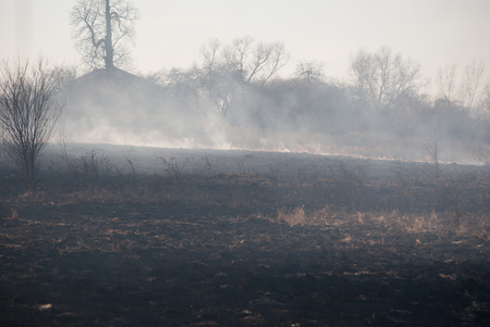 Burning field in the smoke, burnt grass at spring Stock Photo