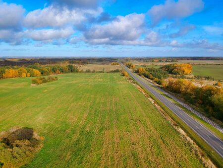 Golden foliadge and green fields around the road, drone photo