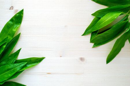 Ramson, wild garlic on bright wooden background