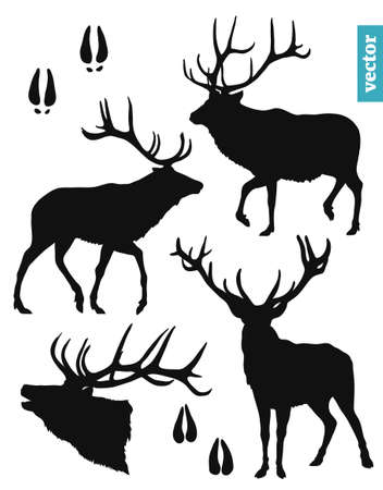 black silhouettes of a deer on a white background