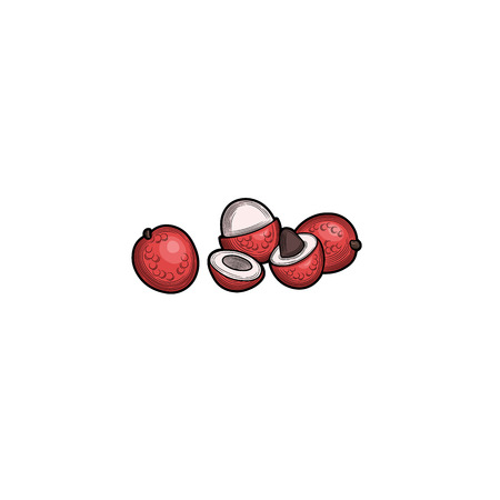 Litchi. Half of the litchi. Fruit crop. Tropical fruit. Illustration. Isolated on white background.