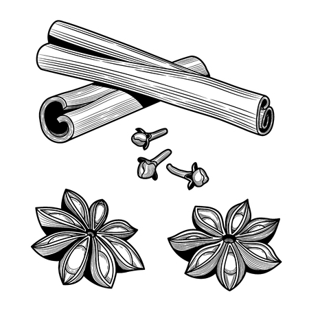 Ingredients. Cinnamon sticks, anise, cloves. Isolated on white background. Vector black vintage engraving illustration. 向量圖像