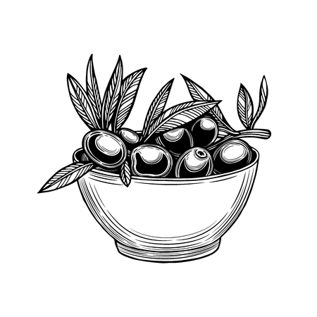Olives on a branch with leaves in a cup. Vector illustration. Vintage style. Templates for design of shops, restaurants, markets.