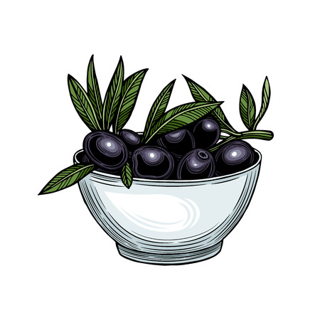 Olives on a branch with leaves in a cup. Vector illustration. Vintage style. Templates for design of shops, restaurants, markets. Archivio Fotografico - 116021453