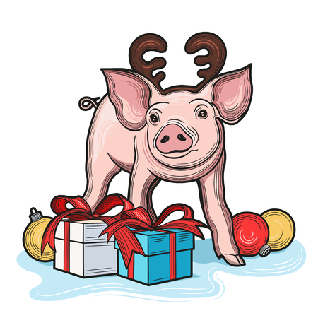 Cute pig, symbol of 2019 year for your design. Vector illustration. Isolated images on white background. Illustration