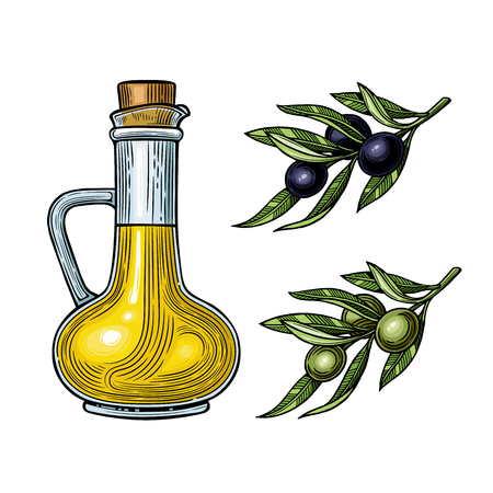 Olives on a branch with leaves. Vector illustration. Vintage style. Templates for design shops, restaurants, markets.