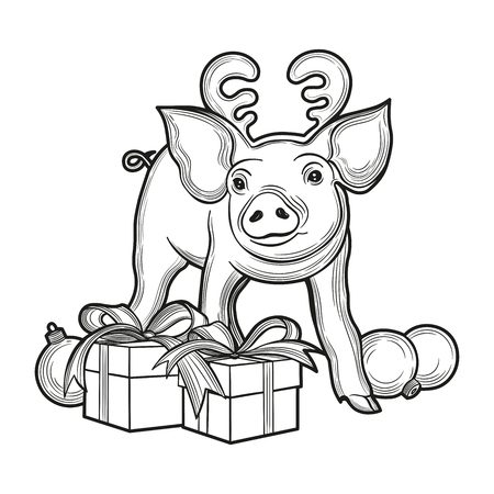 Cute pig, symbol of 2019 year for your design. Vector illustration. Isolated images on white background. Çizim
