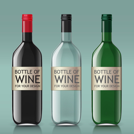 wine bottles: Sample of empty bottles of wine. This template is perfect for your design. Vector set of bottles. Illustration
