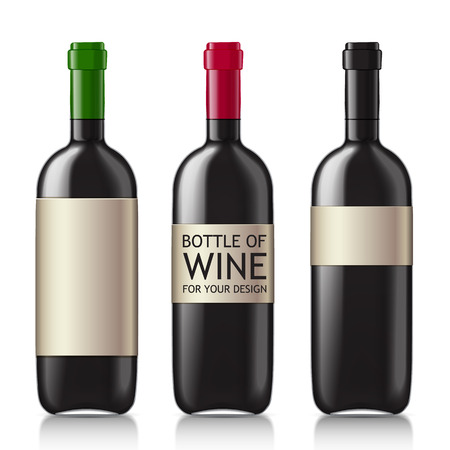 unopened: Set realistic glass bottles for wine. Patterns of black empty bottles with a sample of your design. illustration.