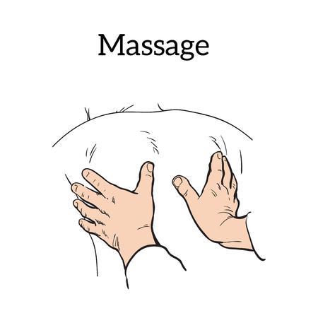 physiotherapist: Hand massage, back massage, body massage.