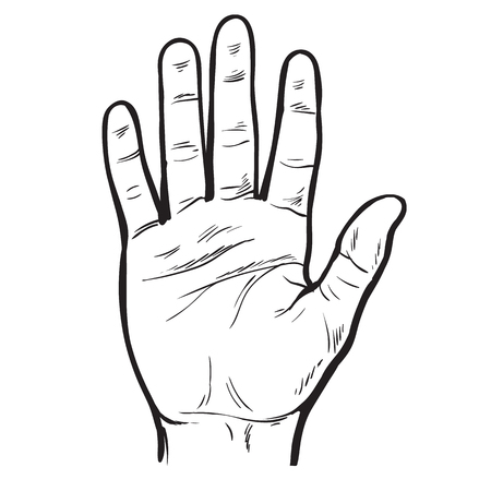 One hand. Hand showing five fingers. 向量圖像