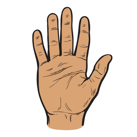 hand up: One hand. Hand showing five fingers. Illustration