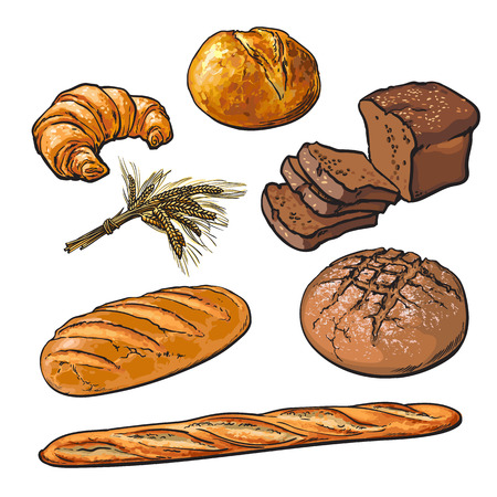 rye bread: Set bread products, pastries vector on a white background, sliced loaf, French baguette, rye bread, wheat branch, cutting cakes, croissants, colored sketch style hand-drawn, bakery products, rooty