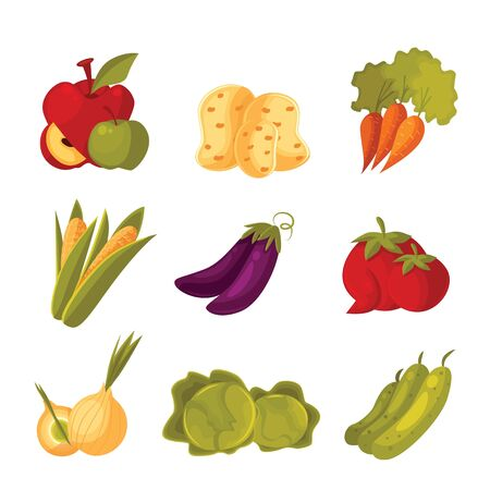 garden stuff: big set of different vegetables, tomato, zucchini, cabbage, corn, carrots, potatoes, colorful veggies isolated on white background, farm food, garden stuff in the arrangement