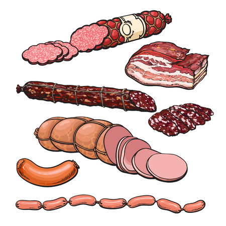 cooked sausage: Set sausages, vector sketch hand-drawn salami, Meat products isolated on white background, Ready sausage, salami, bacon, sausages, bacon, meat organic farming, ready meals, sliced sirvelat Illustration