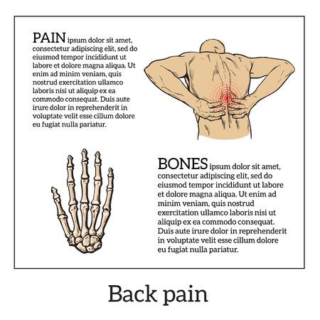 violation: dolor lumbar en un hombre dolor de espalda en un bosquejo del vector esquema humano, ilustración de color con el concepto de la enfermedad hacia atrás, violación de la cintura, vértebras lumbares y los discos intervertebrales Vectores