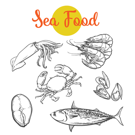 aquaculture: Set of marine products from the sea food, vector set sketch hand-drawn elements, sea fish, crab, shrimp, fish steak, Colmar, mussels isolated on white background food color selection of fresh sea food