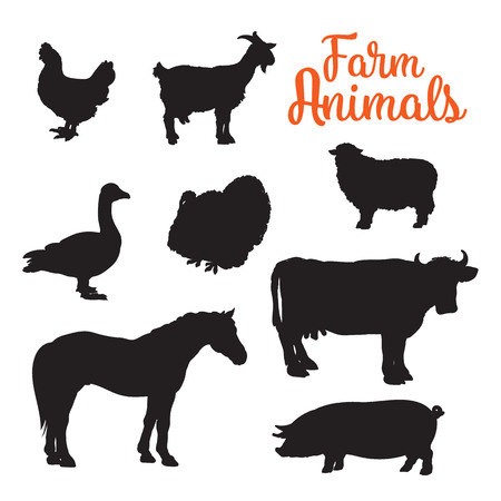 Black contours drenched farm animals, goose cow horse pig and goat kurischtsa turkey, animals isolated on white background set of different animals bird cattle Stok Fotoğraf