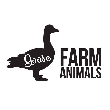 one animal: Grey goose, poultry, illustration sketch, farm feathered animal, one color and the beautiful goose on a yellow background